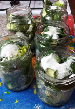 Огурцы маринованные на зиму